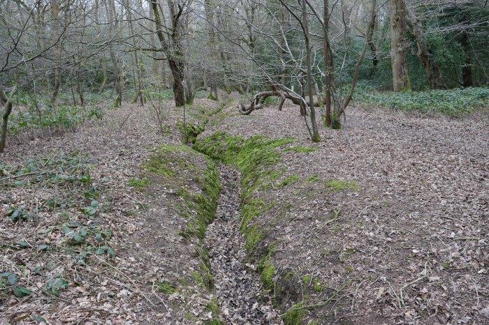 Hadley Wood 6