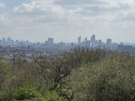Hampstead Heath view from Hill