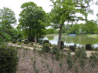 Forty Hall Lake - Copy
