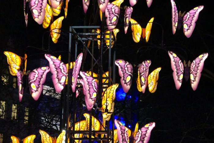 Lumiere Butterflies 2
