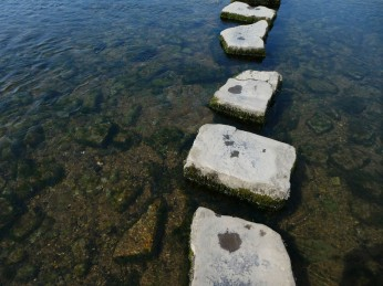 Ogmore Stepping Stones closeup