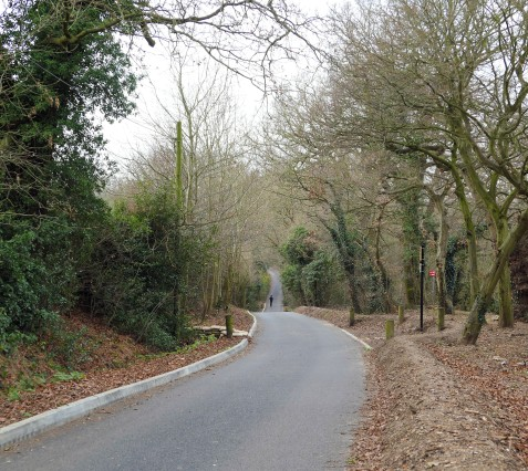 blog cooks hole road